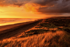 Primavera en Nueva Zelanda - imagen galería 9