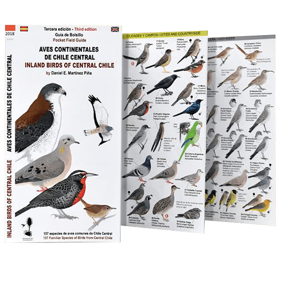 Guía de Campo Aves Continentales del Sur de Chile y Patagonia- Image 2