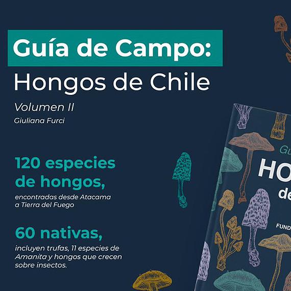 Guía de Campo Hongos de Chile Volumen II- Image 4