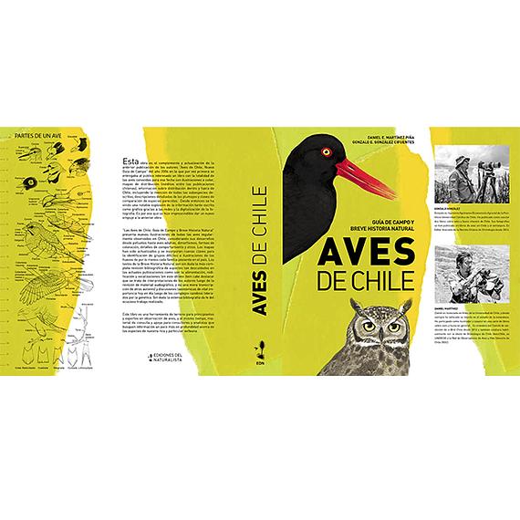 Aves de Chile: Guía de Campo y Breve Historia Natural- Image 2