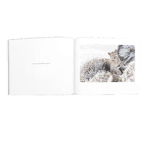 Libro Torres del Paine- Image 3