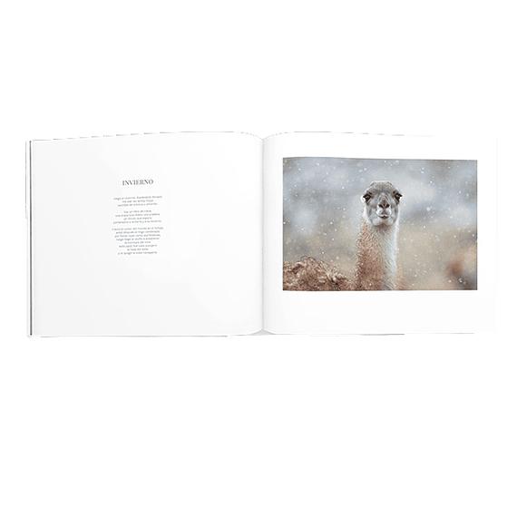 Libro Torres del Paine- Image 5