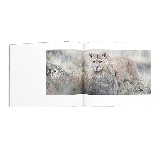 Libro Torres del Paine- Image 6