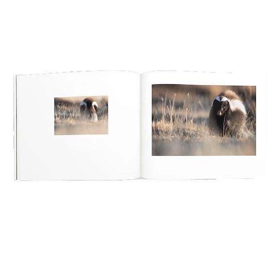 Libro Torres del Paine- Image 7