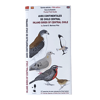 Guía de Campo Aves Continentales de Chile Central