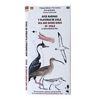 Guía de Campo Aves Marinas y Playeras de Chile