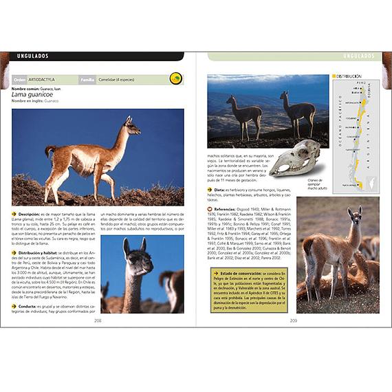 Guía de Campo de los Mamíferos de Chile- Image 2