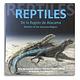 Reptiles De La Región De Atacama - Image 1