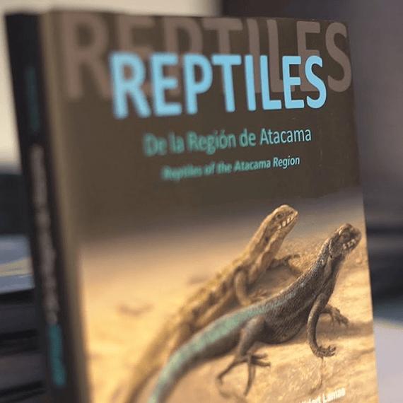 Reptiles De La Región De Atacama- Image 2