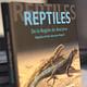 Reptiles De La Región De Atacama - Image 2