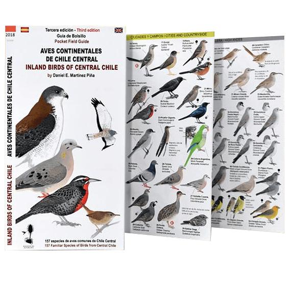 Guia de Campo Aves de Chlie Pack 4 Unidades- Image 2