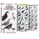 Guia de Campo Aves de Chlie Pack 4 Unidades - Image 2