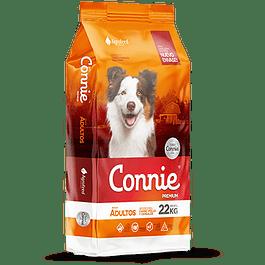 Connie Perro Adulto 25 kilos