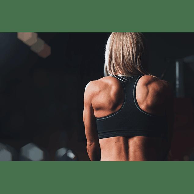 Pack - Pro Training - Sports