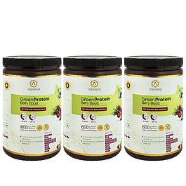 Plan GreenProtein Berry Boost