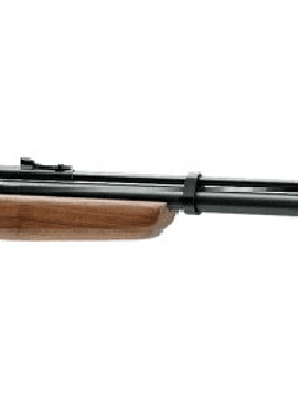 RIFLE BENJAMIN DISCOVERY BP9M22GP