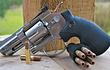 Revolver Dan Wesson 2.5