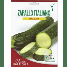 SEMILLA ZAPALLO ITALIANO 8GR SG