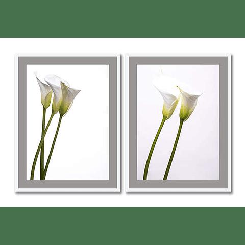 Conjunto de Quadros Flower Cup Milk - Alteração de valores por medidas