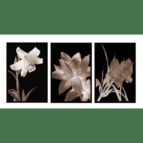 Trio de Quadros Separados  Chérie - Alteração de valores por medidas