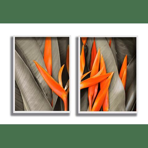 Quadros Dancing Sheets - Alteração de valores por medidas