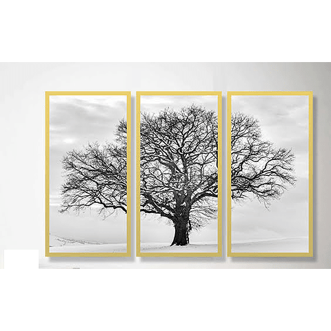 Trio de Quadros Separados Cotton Tree - Alteração de valores por medidas