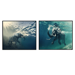 Par de Quadros Separados Elefantes  - Alteração de valores por medidas