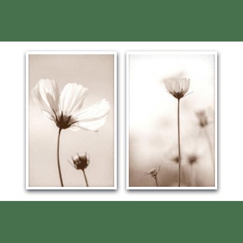 Conjunto de Quadros Separados Fleurir - Alteração de valores por medidas