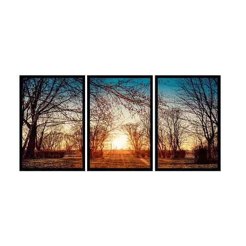Trio de Quadros Separados Twigs - Alteração de valores por medidas