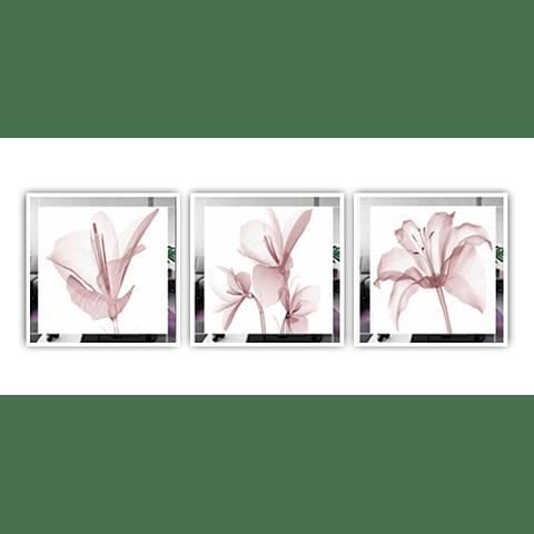 Trio de Quadros Antíqua - Alteração de valores por medidas