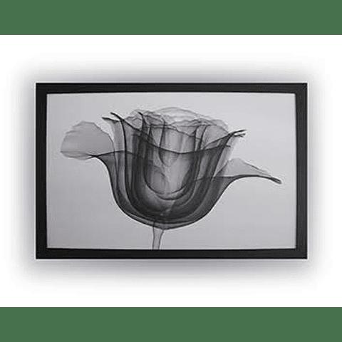 Quadro Lightning Flower - Alteração de valores por medidas