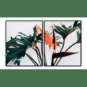 Conjunto de Quadros Separados Plants - Alteração de valores por medidas