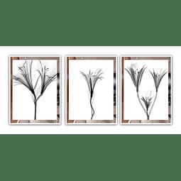Conjunto de Quadros Queen - Trio - Alteração de valores por medidas