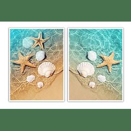 Conjunto de Quadros Separados Starfish - Alteração de valores por medidas