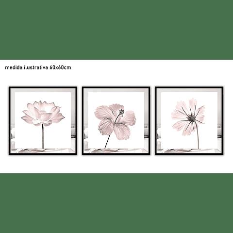 Trio de Quadros Separados Rebeca - Alteração de valores por medidas
