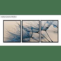 Trio de Quadros Separados  Sade - Alteração de valores por medidas