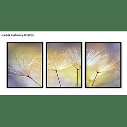 Trio de Quadros Separados  Radiance - Alteração de valores por medidas