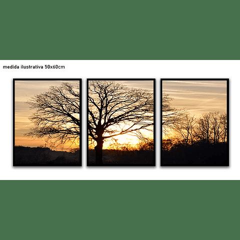 Trio de Quadros Separados  Savana - Alteração de valores por medidas