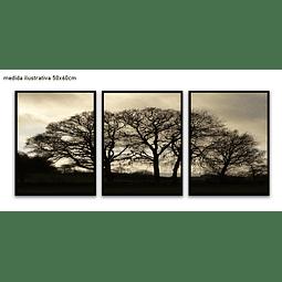 Trio de Quadros Separados  Cloudy - Alteração de valores por medidas