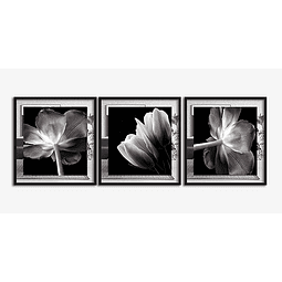 Trio de Quadros Separados Afrodite - Alteração de valores por medidas