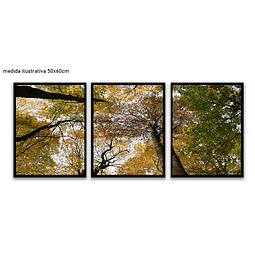 Trio de Quadros Separados  Susy - Alteração de valores por medidas