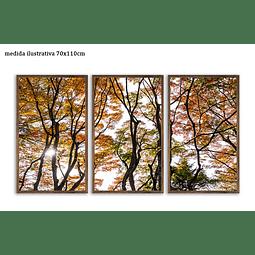 Trio de Quadros Separados  Hidden - Alteração de valores por medidas