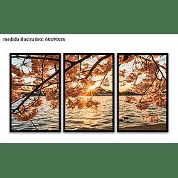 Trio de Quadros Separados  Cherry Trees - Alteração de valores por medidas