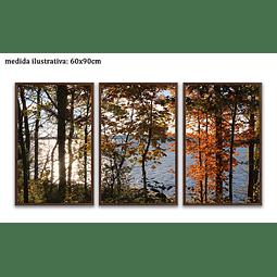 Trio de Quadros Separados  Amélia - Alteração de valores por medidas