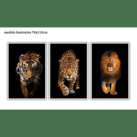 Trio de Quadros Separados Selvagem - Alteração de valores por medidas