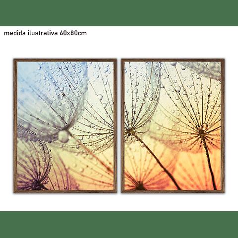 Conjunto de Quadros Separados Flora - Alteração de valores por medidas