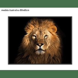 Quadro Majestade  - Alteração de valores por medidas
