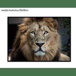 Quadro Lenon - Alteração de valores por medidas