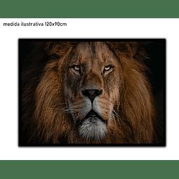 Quadro Morpheu - Alteração de valores por medidas