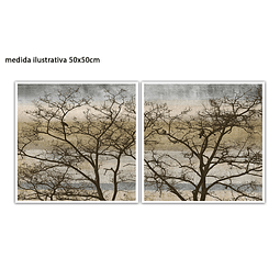 Conjunto de Quadros Separados  Linnut  - Alteração de valores por medidas